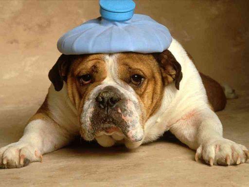 Причины боли в голове